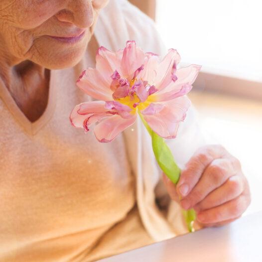 Elderly woman holding a flower